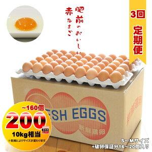 【定期便】業務用S〜Mサイズ鶏卵200個〜160個(10kg)連続3回