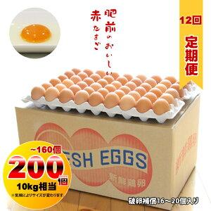 【定期便】 業務用S〜Mサイズ鶏卵200個〜160個(10kg)12回