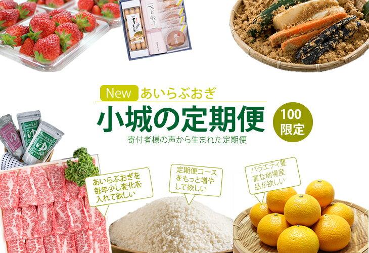 【ふるさと納税】G-103 【定期便】ニューあいらぶおぎセット(限定100)