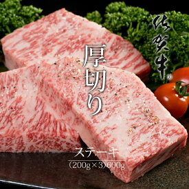 【ふるさと納税】佐賀牛ロースステーキ(600g) 佐賀牛 ステーキ 厚切り ロース 合計600g 牛肉 国産 お肉 ブランド牛 九州産 送料無料