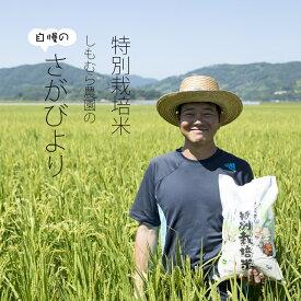 【ふるさと納税】特別栽培米 さがびより(7kg)