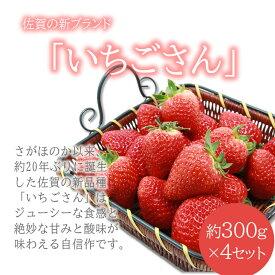 【ふるさと納税】 【先行予約】新品種 いちごさん 4箱セット 佐賀県産 イチゴ 送料無料