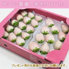 【ふるさと納税】【先行予約】 白いちご パールホワイト (2パック) 佐賀県産 送料無料