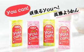 【ふるさと納税】you can! ようかん10本入