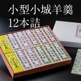 【ふるさと納税】小型小城羊羹12本詰 贈答用 ギフト 送料無料 ようかん