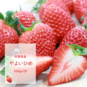 【ふるさと納税】 (先行予約)佐賀県産イチゴやよいひめ (300g×2パック)TMファーム