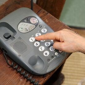 【ふるさと納税】神埼市内みまもりでんわサービス(固定電話・12ヶ月) (H068106)