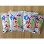 【ふるさと納税】もち米無洗米(H074101)