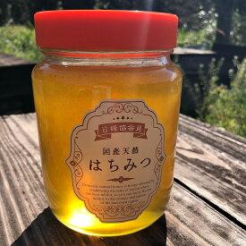 【ふるさと納税】佐賀県産ハチミツ1kg【plan】[FBF024]