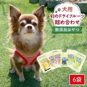 【ふるさと納税】犬の無添加おやつ☆お砂糖不使用 旬のドライフルーツおまかせ6袋 [FCG022]