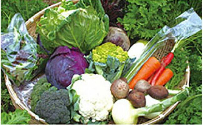 【ふるさと納税】【定期コース】よしのがり野菜セットラージ(12G01)