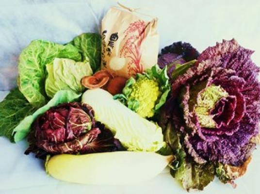 【ふるさと納税】よしのがり野菜セットラージ+脊振石清水米20キロ(31D20)