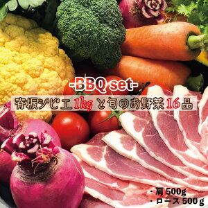 【ふるさと納税】背振ジビエ1kgと旬の野菜16品BBQセット【plan】[FBF040]