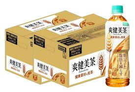 【ふるさと納税】B-100R 爽健美茶 健康素材の麦茶 600mlPET(2ケース)計48本【特定保健用食品】