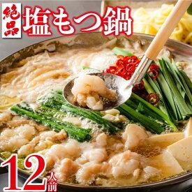 【ふるさと納税】絶品塩もつ鍋12人前(シマ腸1.2kg)