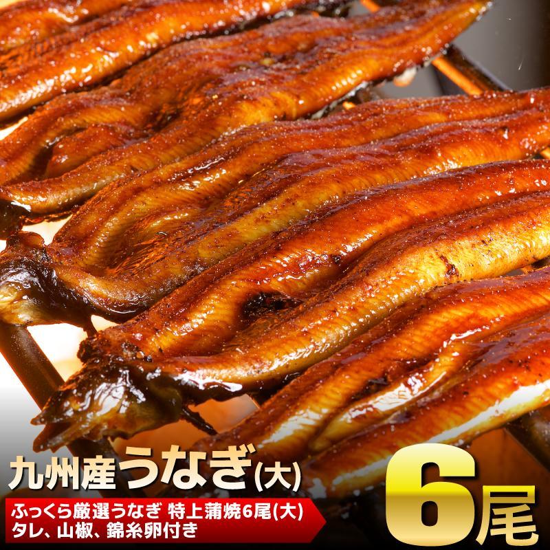 【ふるさと納税】九州産「うなぎの蒲焼き」 6尾(大)