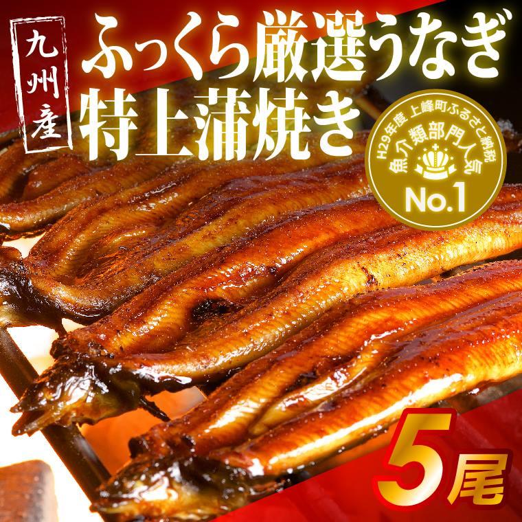 【ふるさと納税】九州産 ふっくら厳選うなぎ 特上蒲焼き5尾