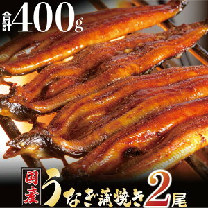 【ふるさと納税】国産うなぎ蒲焼 (約200g×2尾)
