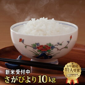 【ふるさと納税】令和元年産 新米さがびより 10kg(5kgx2袋)
