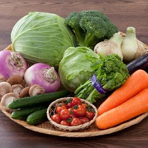 【ふるさと納税】直売所直送!季節の野菜詰め合わせ 定期便3回