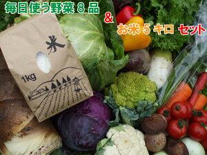 【ふるさと納税】毎日使う野菜8品とお米5キロ(精米ヒノヒカリ)(BG158)
