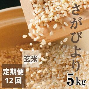 【ふるさと納税】【老舗米屋の店長厳選】さがびより毎月5キロお届け【12回コース】 玄米(BG078)