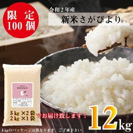 【ふるさと納税】【12キロ】令和2年産米さがびより【限定100袋】(BG142)