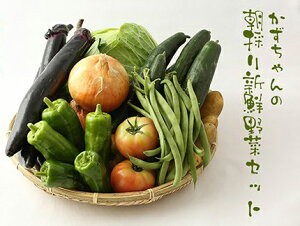【ふるさと納税】かずちゃんの朝採り新鮮野菜セット【みやき町産朝採り野菜をお届け】(CC001)