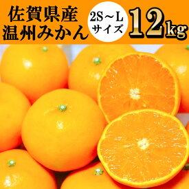 【ふるさと納税】佐賀県産 温州みかん 合計12kg(7キロ+5キロ)(DY021)