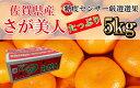 【ふるさと納税】佐賀県産みかん さが美人 5kg 糖度11度以上 2S〜Lサイズ(DY023)