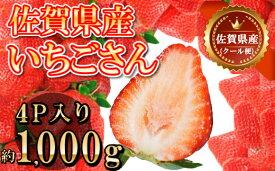 【ふるさと納税】佐賀県産いちごさん 合計約1kg 250g×4P 苺 いちご イチゴ(DY039)
