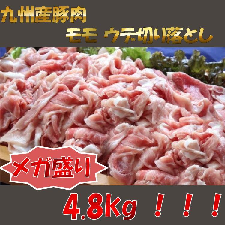 【ふるさと納税】【超目玉商品】九州産 豚モモ ウデ 切り落とし 4800g【BTA48】(B4800)