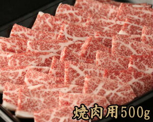 【ふるさと納税】最高級牛肉「佐賀牛」焼肉用 500g【冷蔵】(D76-H)