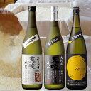 【ふるさと納税】みやき町の地酒「天吹」生もと 純米大吟醸 大吟醸造り 三品(CN009)