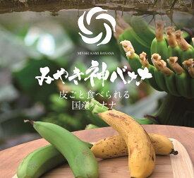 【ふるさと納税】【国産バナナ】みやき神バナナ5本セット(CR003)