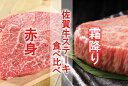 【ふるさと納税】【計6回】ステーキで豪華に彩る佐賀牛バリエーションステーキ定期便(DN036)