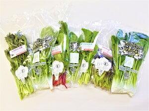 【ふるさと納税】オーガニックサラダミニセット【植物性で育てた完全無農薬の葉野菜ブランド有機JAS】「6回定期便」(CQ004)