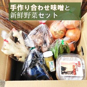 【ふるさと納税】手作り合わせ味噌と新鮮野菜セット