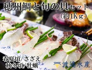 【ふるさと納税】穂州鯛と旬貝(さざえか牡蠣)セット