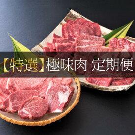 【ふるさと納税】【特撰】佐賀牛・県産和牛 極味肉定期便(毎月1回 計12回配送)