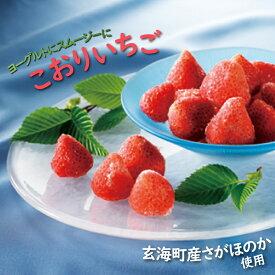 【ふるさと納税】【数量限定!】こおりいちご 1kg 品種:さがほのか