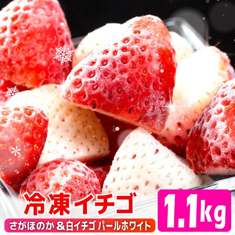 【ふるさと納税】SF001R 冷凍イチゴ[こおりいちご]1.1kg(パールホワイト&さがほのか)
