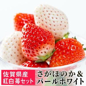 【ふるさと納税】SF19002R 佐賀県産 白いちご「パールホワイト」&「さがほのか」紅白セット