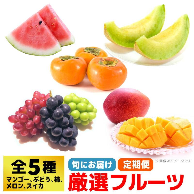 【ふるさと納税】SI001R 産地直送!!厳選5種「九州のフルーツ定期便」