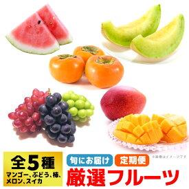 【ふるさと納税】SI19001R フルーツアドバイザー厳選5種「フルーツ定期便1」