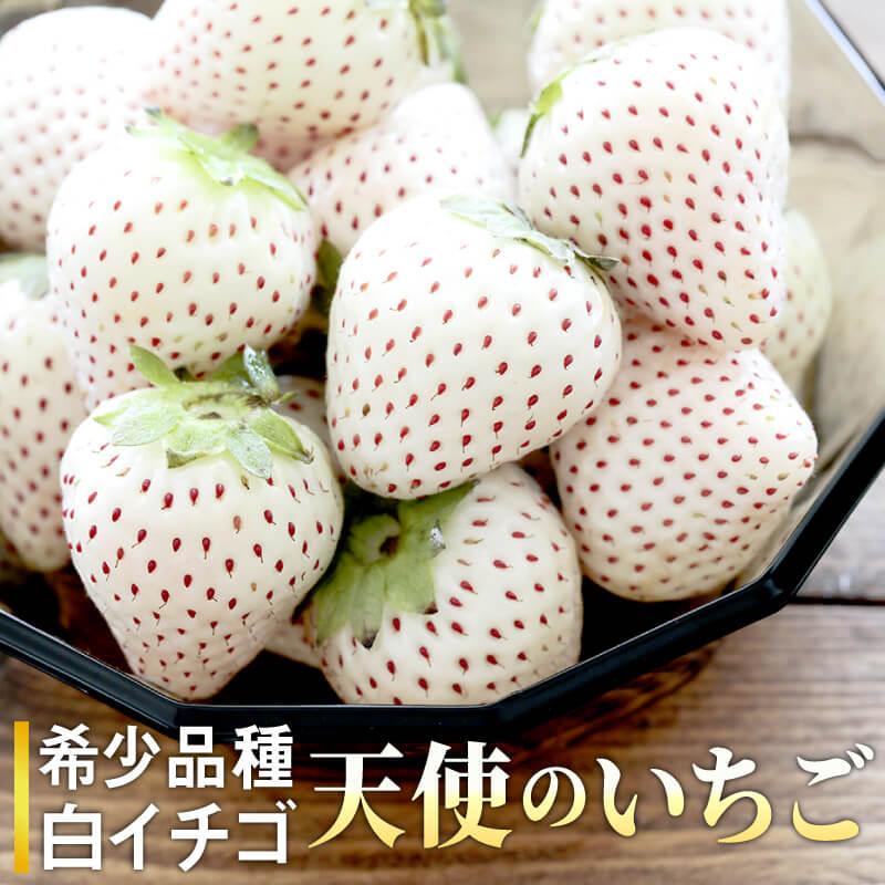 【ふるさと納税】TM002R 『天使のいちご』佐賀県産白いちご