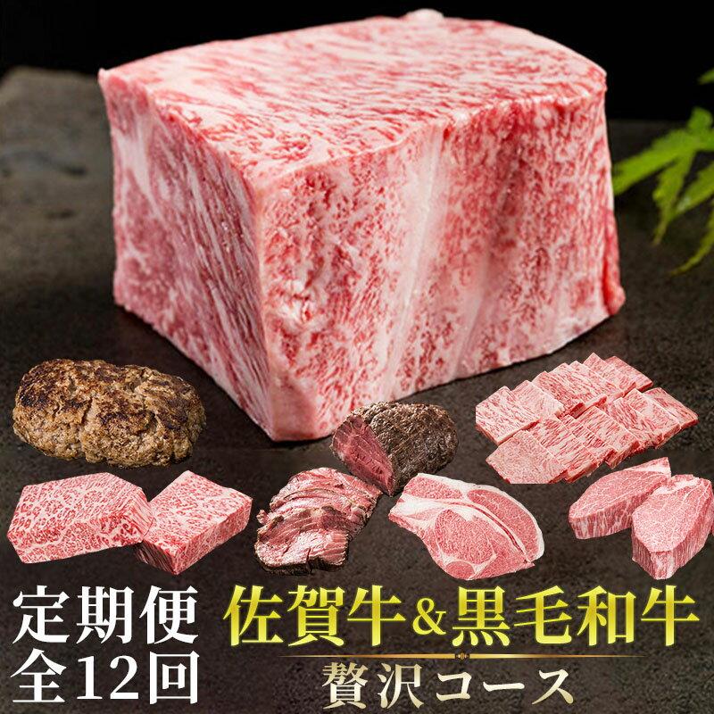 【ふるさと納税】YG015R [定期便全12回]佐賀牛&九州産黒毛和牛「贅沢コース」