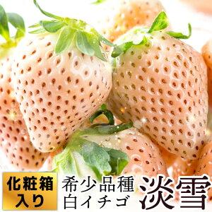 【ふるさと納税】KN19005R 【化粧箱入】希少品種の白イチゴ『淡雪』400g