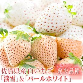 【ふるさと納税】KN19008R 【佐賀県産】白いちご「淡雪」&「パールホワイト」