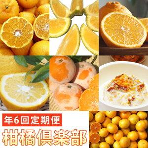 【ふるさと納税】SN19005R 『柑橘倶楽部』有機柑橘や加工品を全6回(奇数月)お届け♪